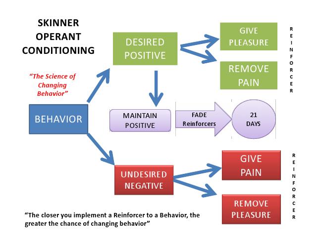 B.f. skinner's essay on behaviour modification