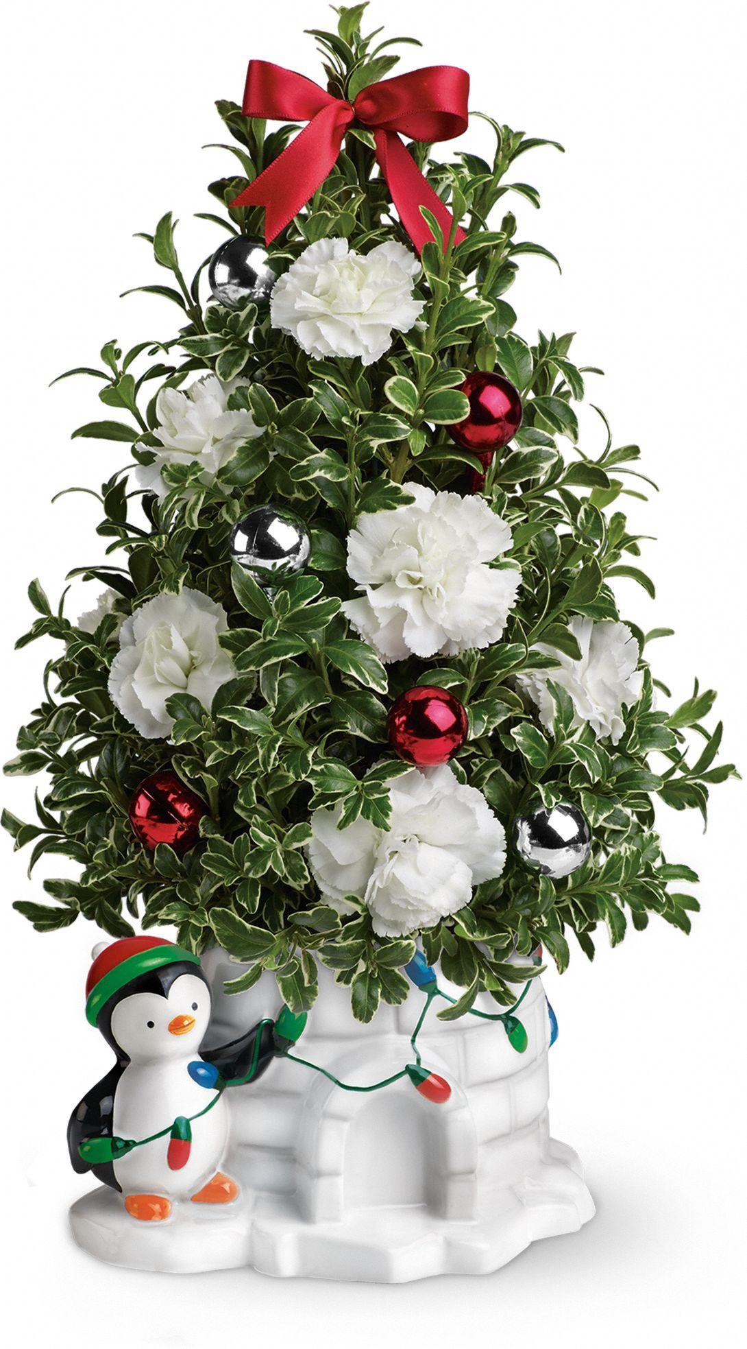 Send a Hug Precious Penguin by Teleflora Christmas