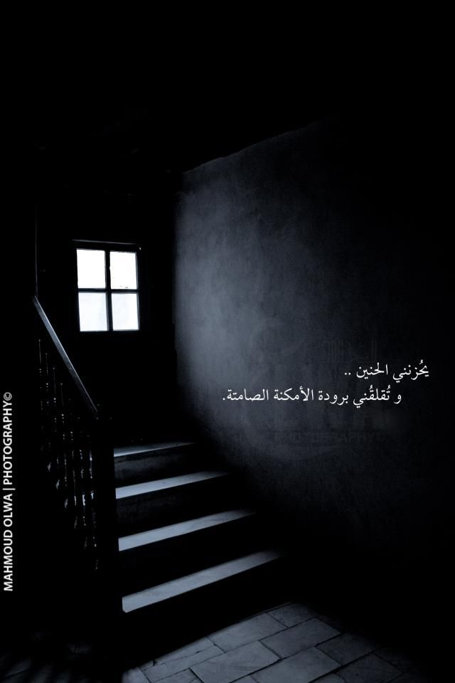 Desertrose Arabic Quotes Words Quotes
