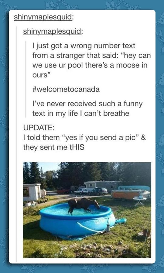 This Only Happens In Canada Tumblr Funny Funny Funny Pictures