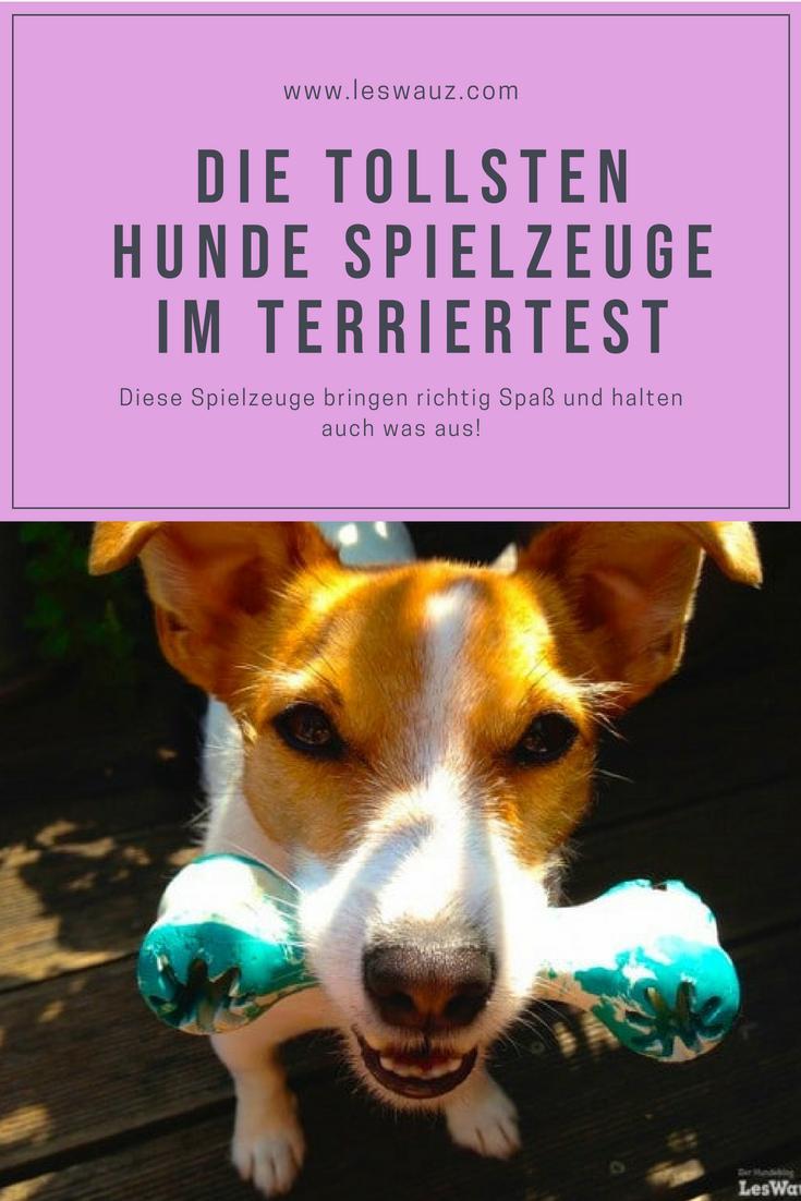 Im Terriertest Die Besten Und Haltbarsten Spielzeuge Fur Hunde Leswauz Spielzeug Hund Hunde Terrier