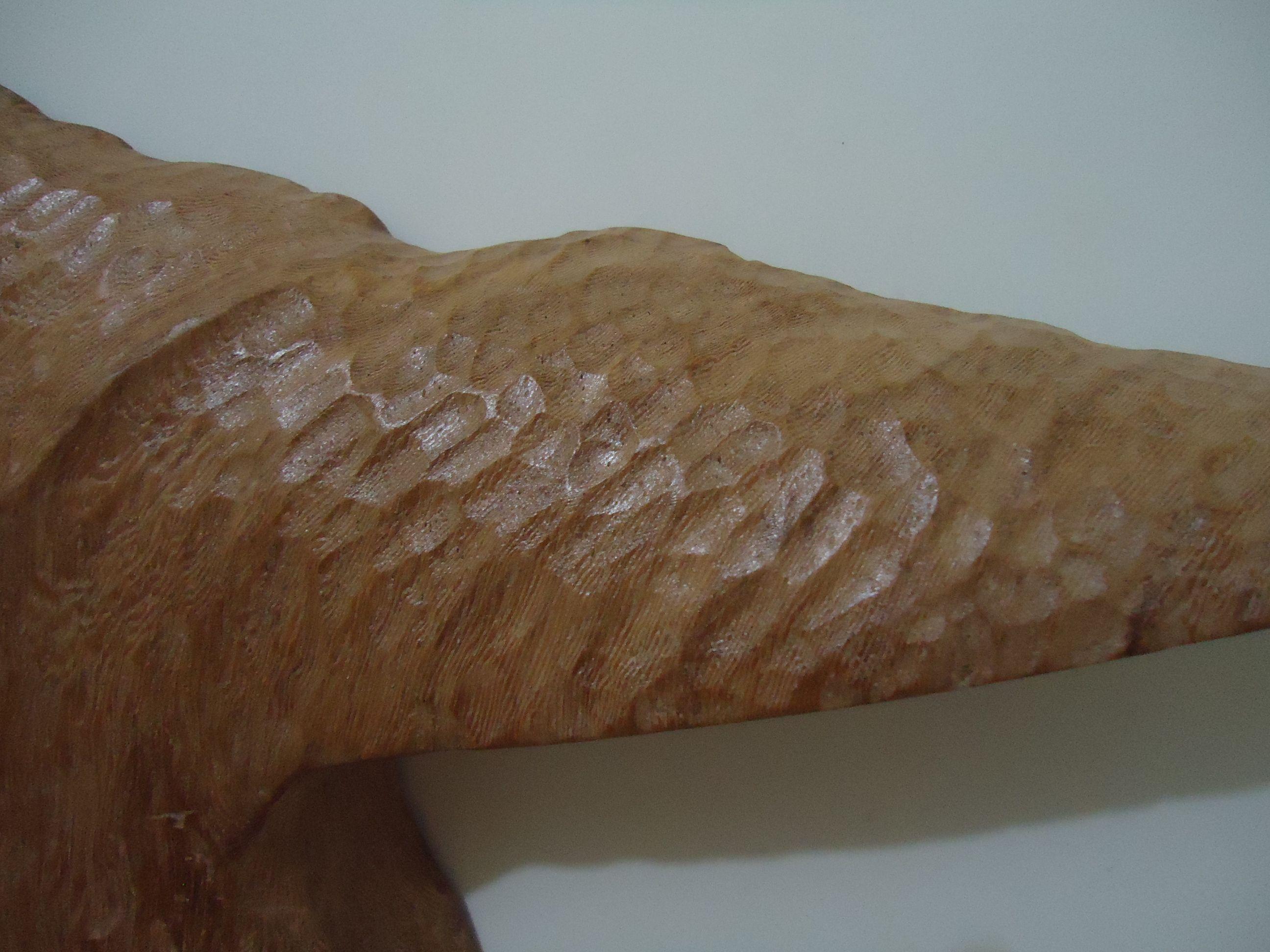 Rabo de Baleia Jubarte talhado em madeira de qualidade e resistente, com tratamento anti-cupins e encerada para dar brilho a madeira, NÃO é pintada. Muito bem detalhada e realista. Peça feita 100% a mão. Tamanho:  26 cm de comprimento / 20 cm de altura / 4 cm de profundidade  Preço: 100,00 reais  Quantidade: 1 unidade (pronta entrega)  Frete não incluso Trabalhamos com vários tipos de madeiras. Aceitamos encomendas em outros tamanhos.