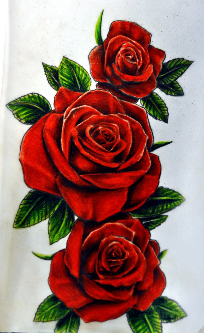 roses by karlinoboy on deviantart tattoos pinterest tattoo ideen rosen tattoo und tattoo. Black Bedroom Furniture Sets. Home Design Ideas