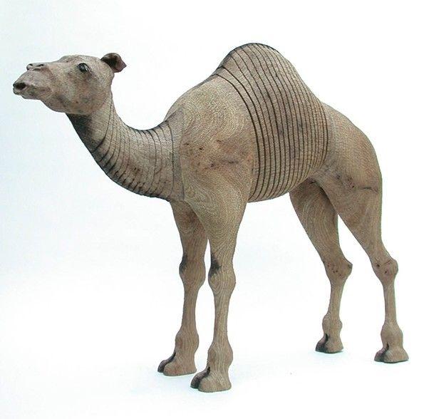camel...Jeff Soan
