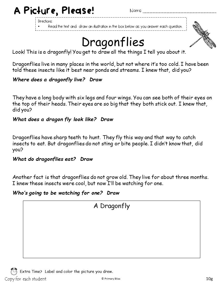 First Grade Sight Word Program (High Frequency Words)   Word ...