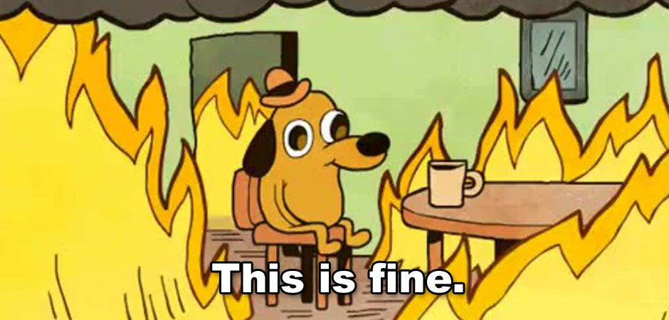 15 GIFs For When Your Life is a Mess but You're Pretending It's FINE | This is fine dog, This is fine meme, Dog memes