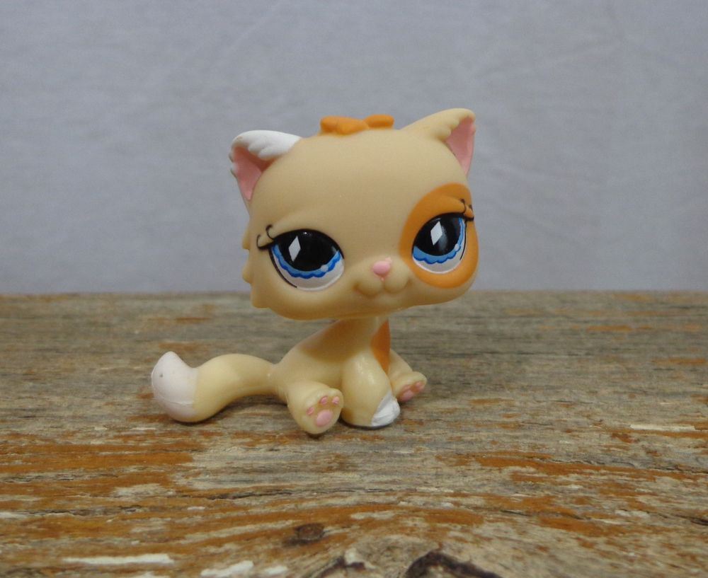 Littlest Pet Shop Lps 521 Caramel Tan Persian Cat W Blue