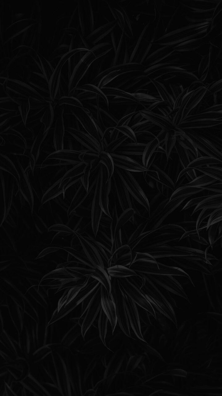 List of Premium Pitch Black Wallpaper Iphone for iPhone 11 This Month