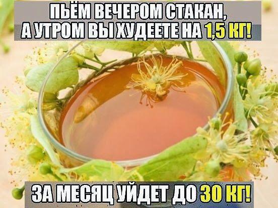 зеленый чай для похудения форум