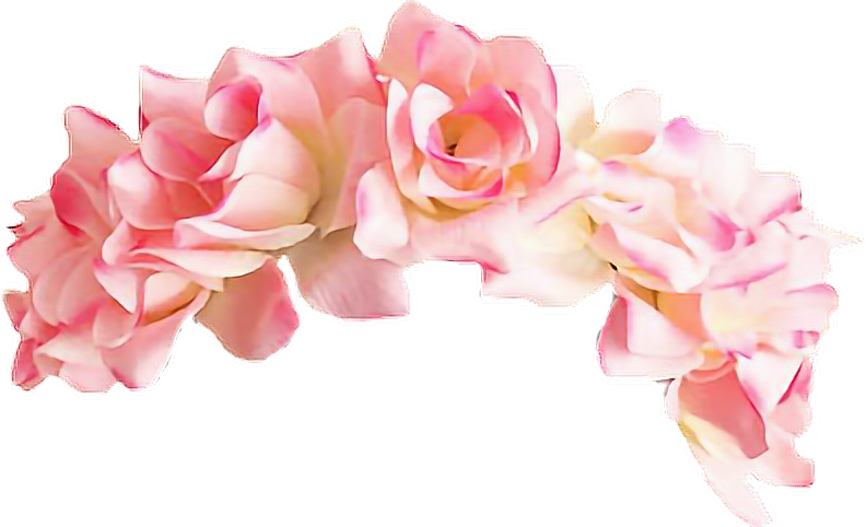 Discover The Coolest Freetoedit Remixit Flowercrowns Stickers Flower Crown Drawing Transparent Flowers Snapchat Flower Crown