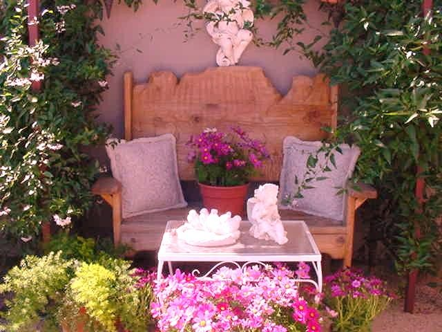 Early spring in our Arizona courtyard | Decor, Outdoor ...