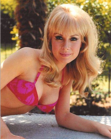 Barbara Eden I Dream Of Jeannie Sexy