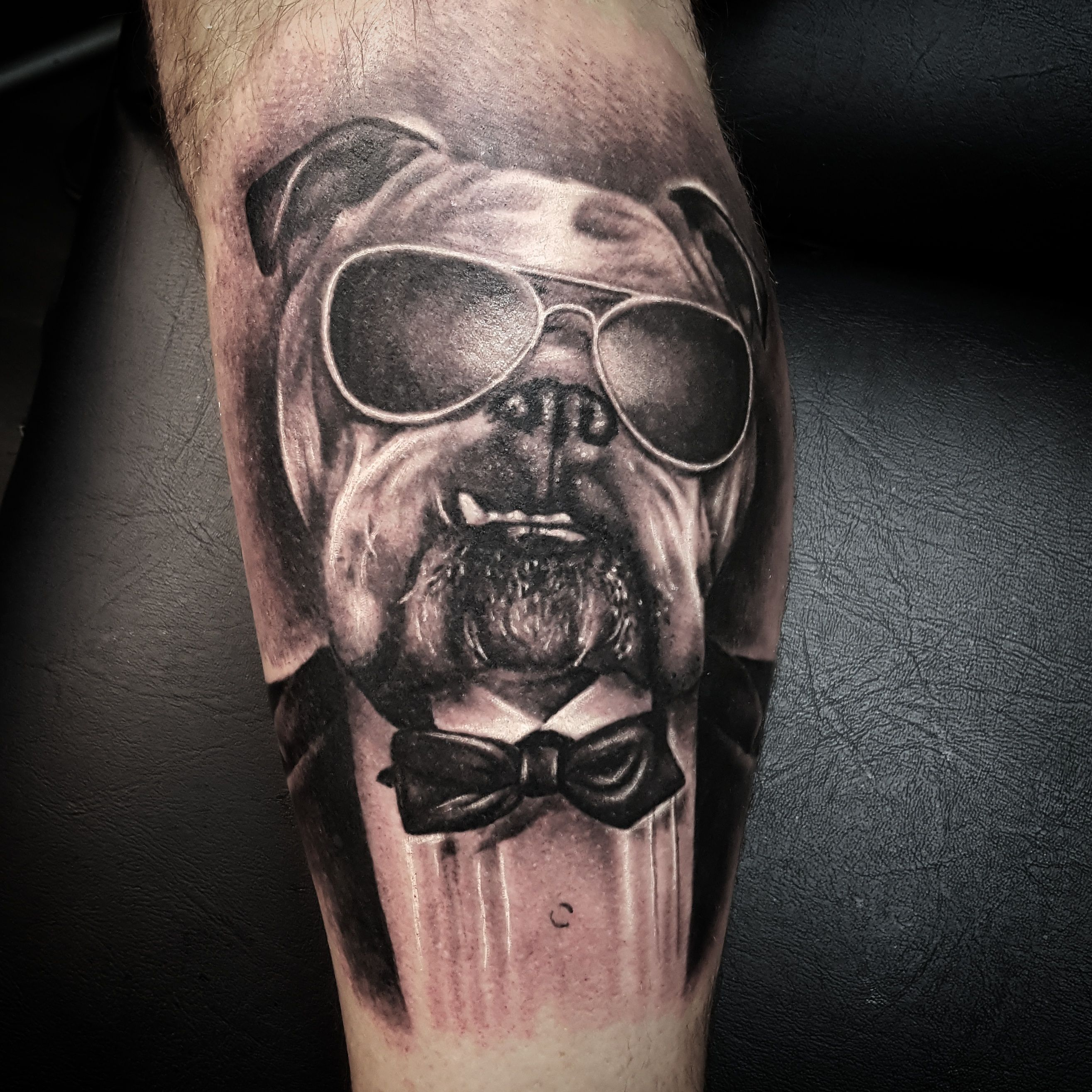 bulldog tattoo by thomas sidney birchall soular tattoo christchurch nz soular tattoo. Black Bedroom Furniture Sets. Home Design Ideas