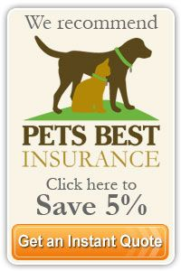 Signal Hill Animal Clinic Pet Insurance Reviews Embrace Pet Insurance Best Pet Insurance