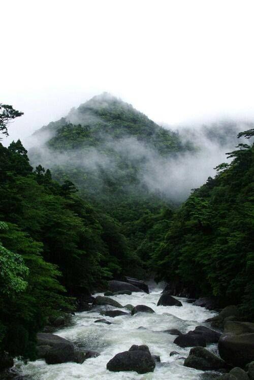 Yeşil Orman nehri