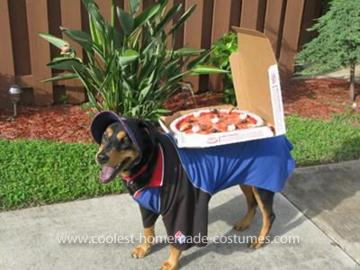 Coolest Domino S Delivery Dog Costume Dog Halloween Costumes