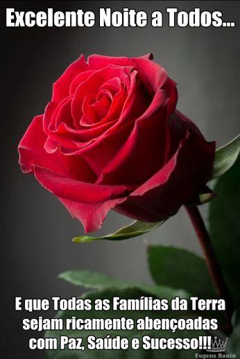 Pin De Lena Busquet Em Amigos Com Imagens Rosas Flores Rosas