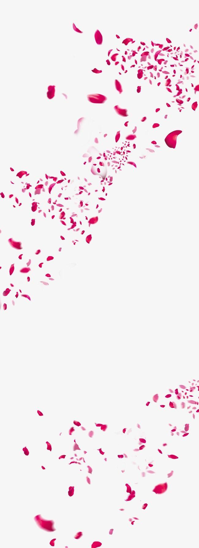 Flores Cor De Rosa Petalas De Flores Decoracao De Festas De Casamento Petalas Caem As Petalas De Rosas Rose Petals Falling Real Rose Petals Flower Petals