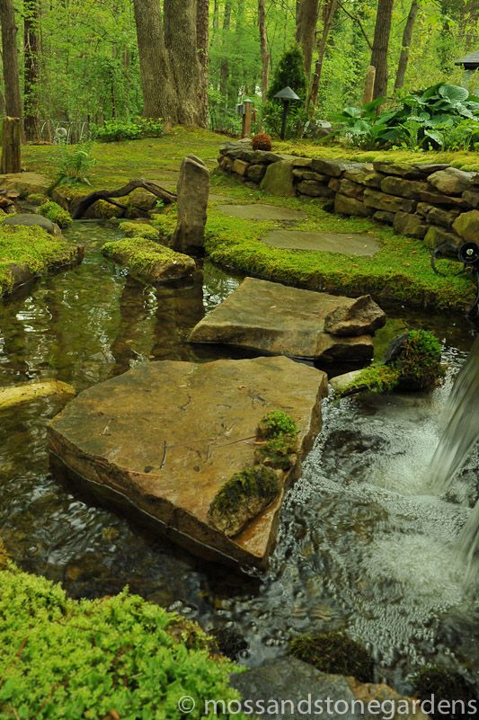 38 Glorious Japanese Garden Ideas: Moss Garden, Garden, Woodland Garden