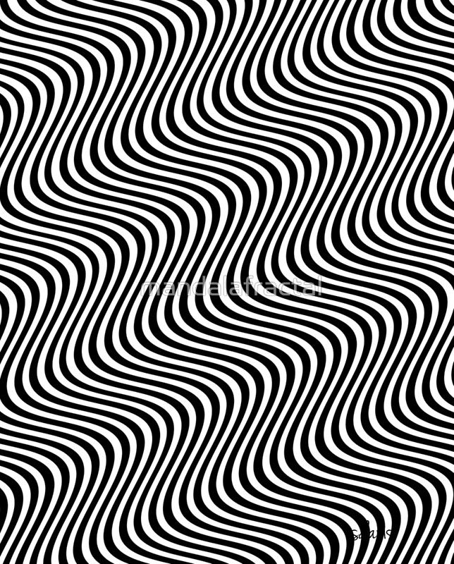Optical Illusion Black White 11416 Graphic T Shirt By