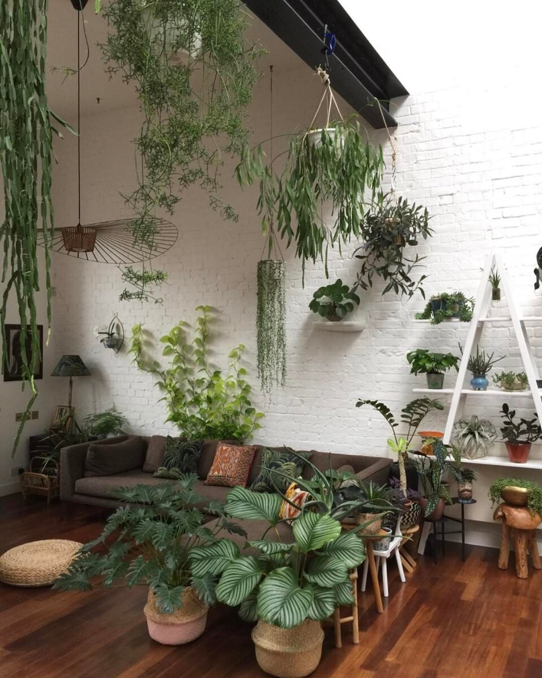 Indoor Apartment Plants: Pin By MmeCamille On Favorite Places & Spaces