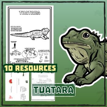 Tuatara 10 Resources Coloring Pages Reading Activities
