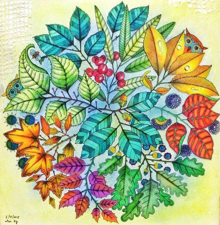 21 Secret Garden Adult Coloring Book in 2020 Secret