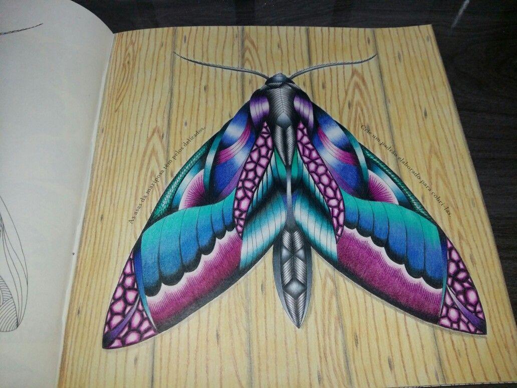 Livro: Reino animal