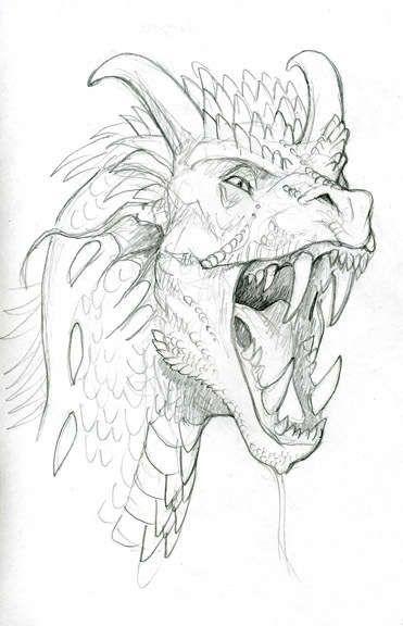 exemplo de cabeça de dragão | Dragones | Pinterest | Dragones ...