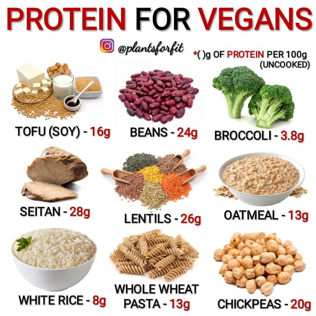 WHAT ARE YOUR FAVORITE VEGAN PROTEIN SOURCES ⏪⏩ COMMENT