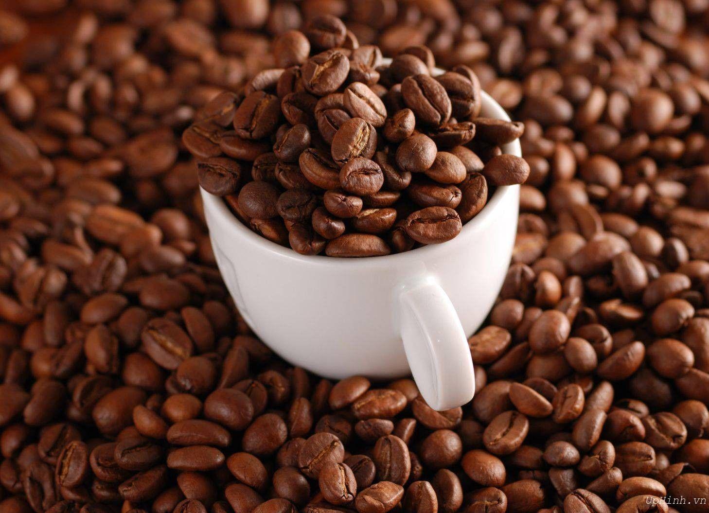 Coffee Bean And Tea Leaf Coffee Bean and Tea Leaf
