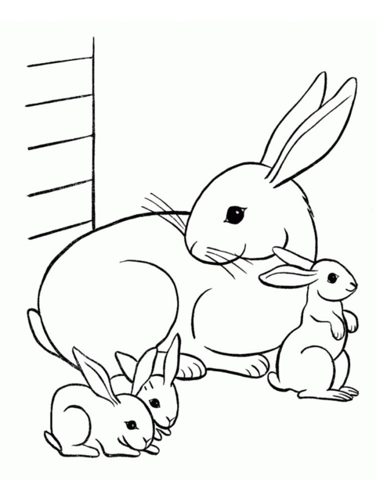 Rabbit Coloring Pages Rabbits Are Small Mammals With Short Smooth Distinctive Mustaches Wit Bunny Coloring Pages Family Coloring Pages Animal Coloring Pages