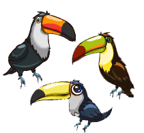 toucan nursery - Google Search