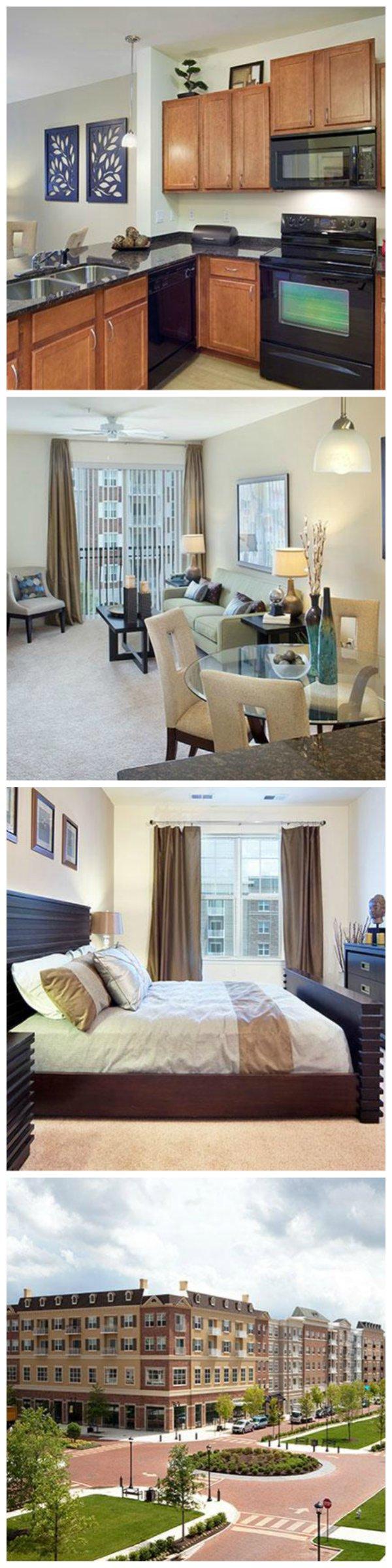 17 Amazing Basement Apartment Floor Plans In Cool Download
