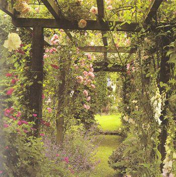 pergola sur une allée du jardin | outdoor spaces | Pinterest ...