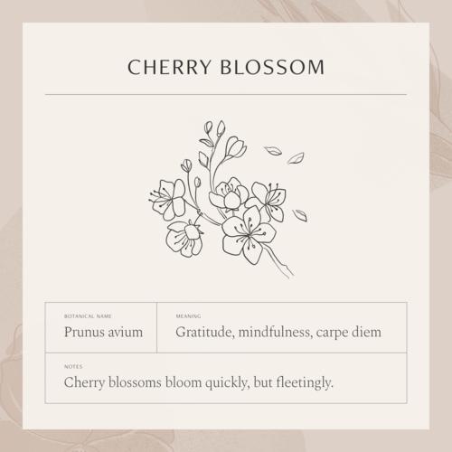 Pin By Nadja Romanova On Tattoo Ideas Cherry Blossom Necklace Flower Meanings Cherry Blossom Tattoo