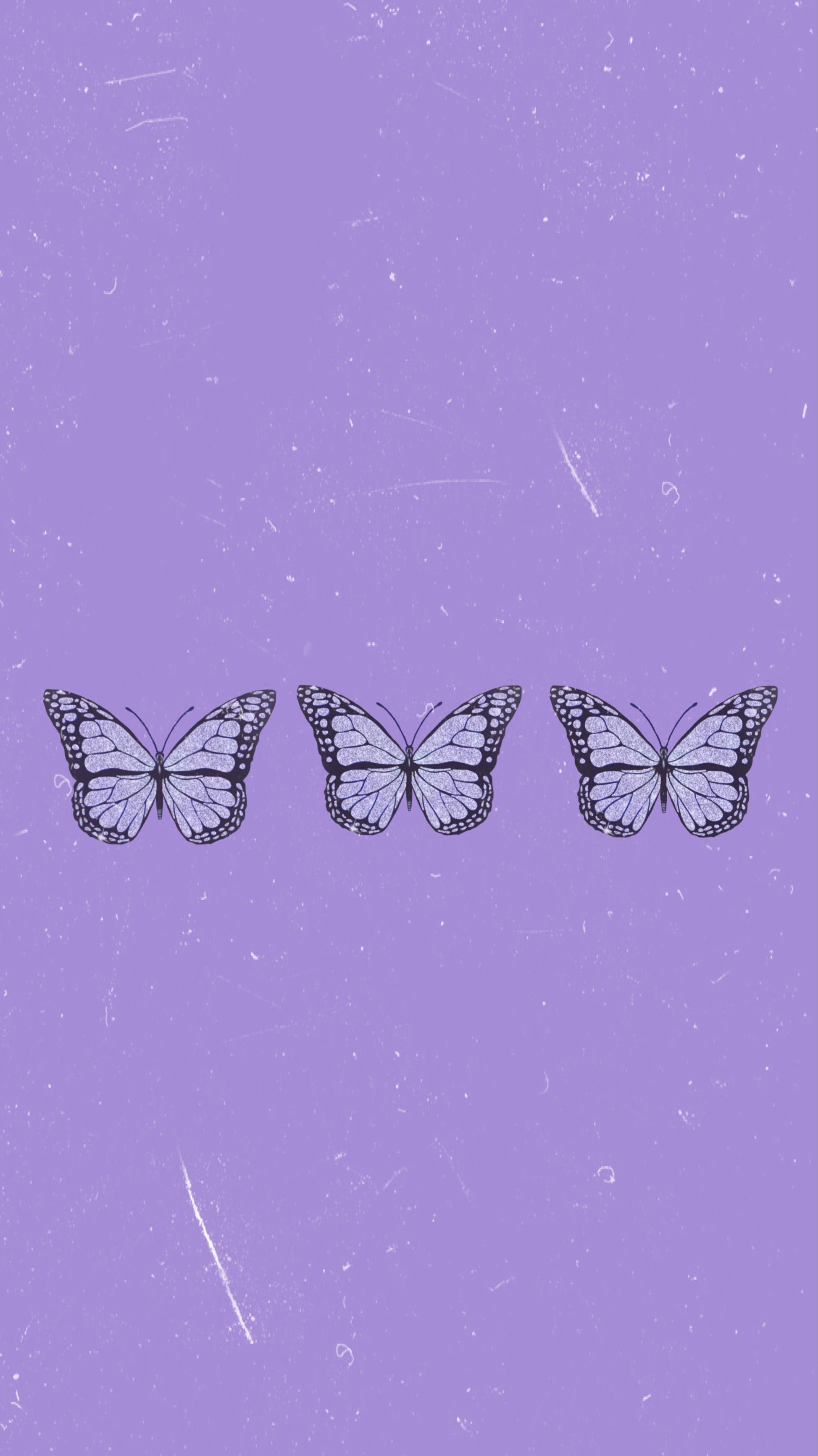 Purple Butterfly Wallpaper Aesthetic : purple, butterfly, wallpaper, aesthetic, Butterfly, Wallpaper, Wallpaper,, Iphone,, Purple