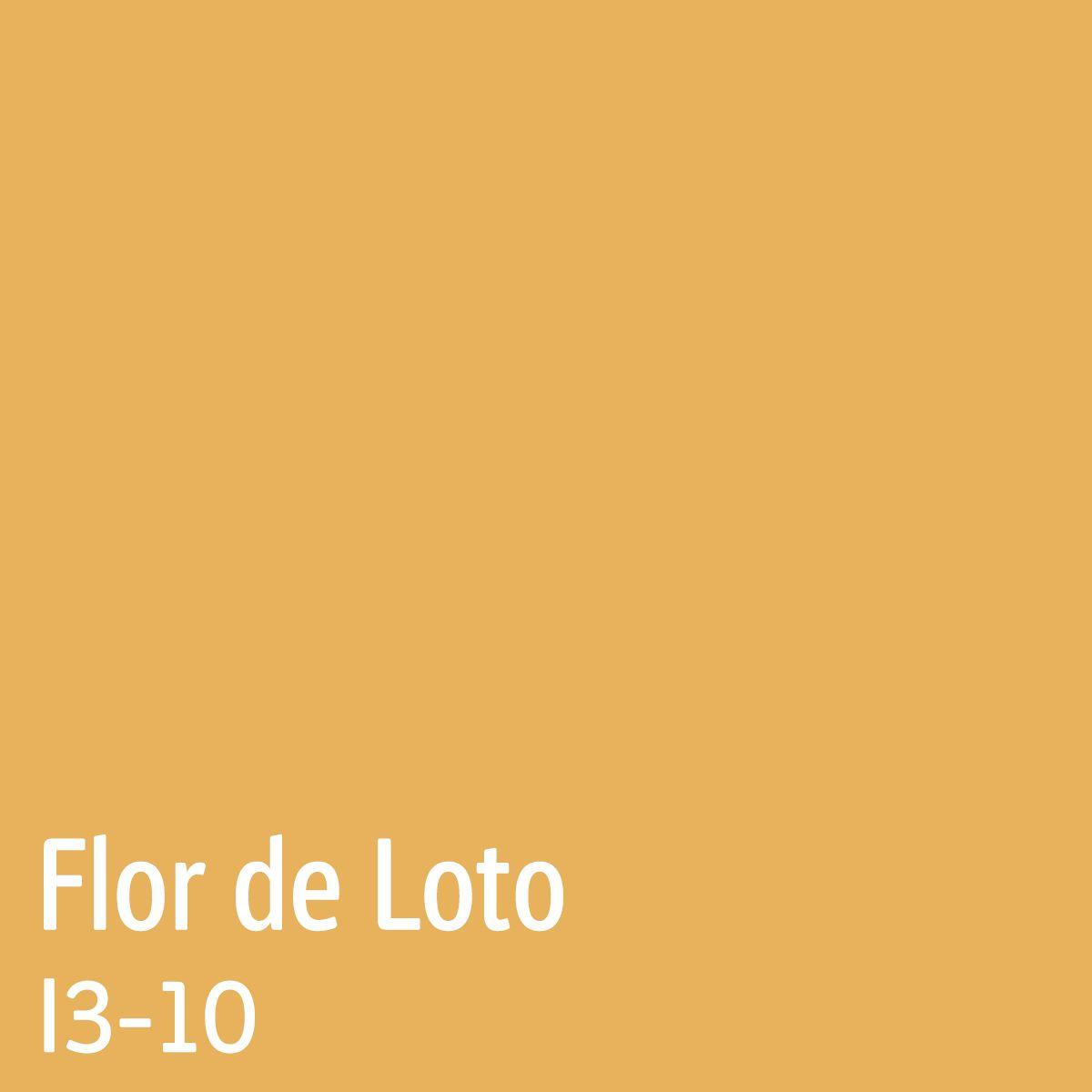 Loteria Romana - Loto 6/49 si noroc