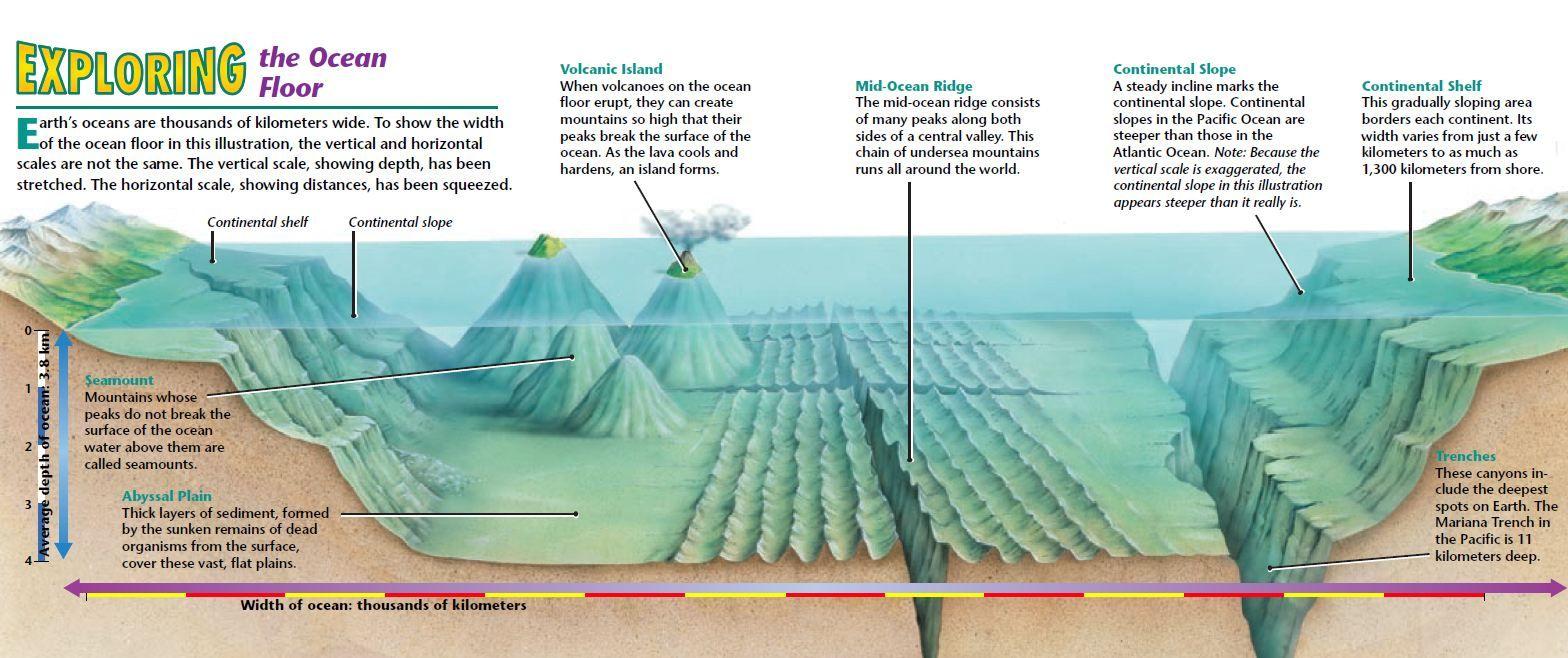 3d ocean floor features diagram 1 11 tridonicsignage de \u2022