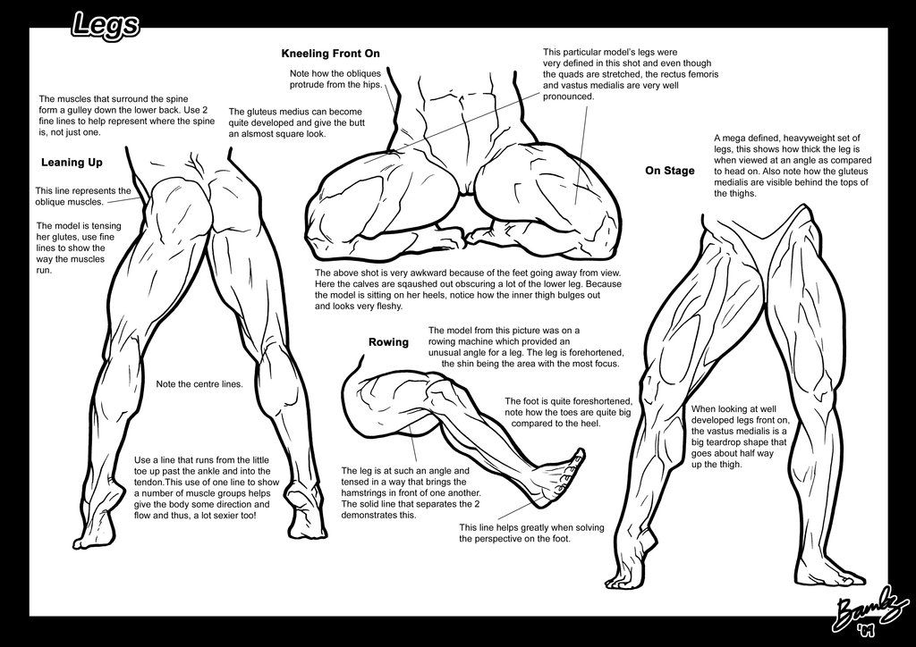 Tutorial: Legs 3 by Bambs79 Muscular female anatomy comic or ...