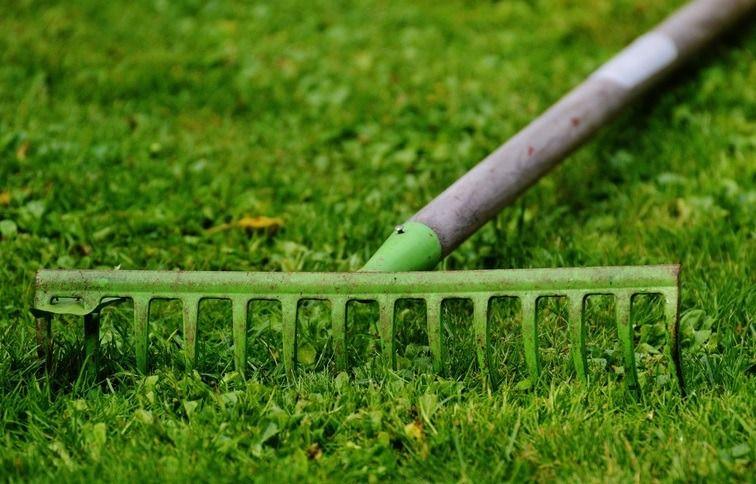 Top 5 Best Rakes For Leaves On Gravel Grass Reviews Guide 2019