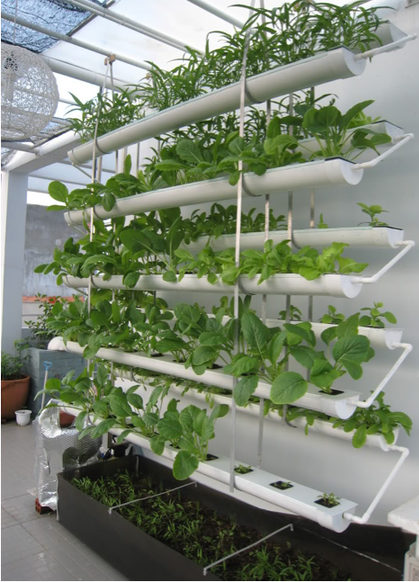 Space efficient aquaponics recherche google hydro aqua aeroponics gardening pinterest - Vertikaler garten diy ...