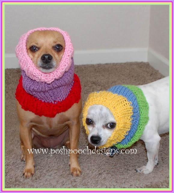 Colors Dog Snood Free Knitting Pattern Dog Snood Snood And Color