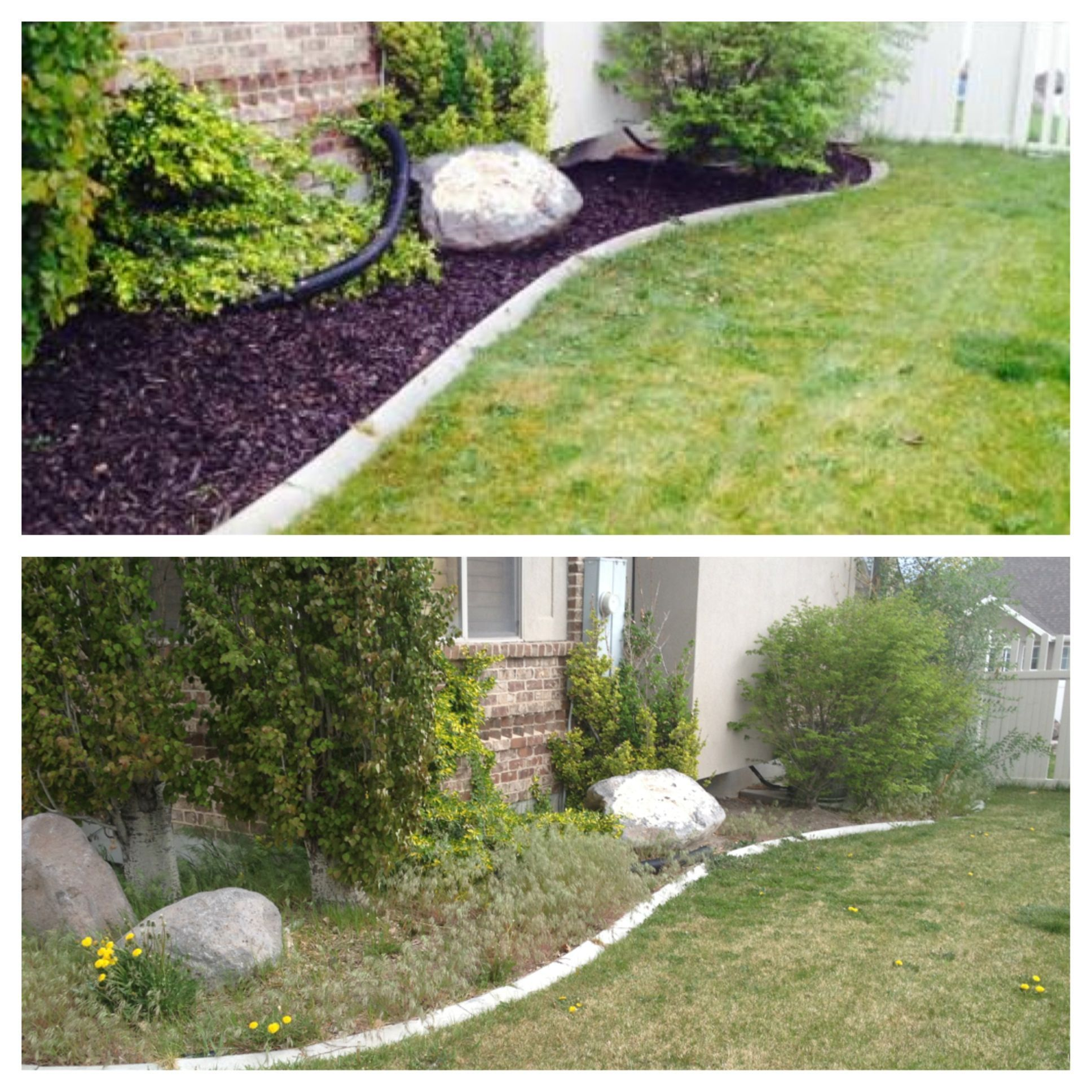 Spring Yard Clean Up Weeding And Mulch Installed The Dark Brown Mulch Looks Amazing Spring Cleaning Yard Front Yard Landscaping Fall Clean Up Diy backyard clean up