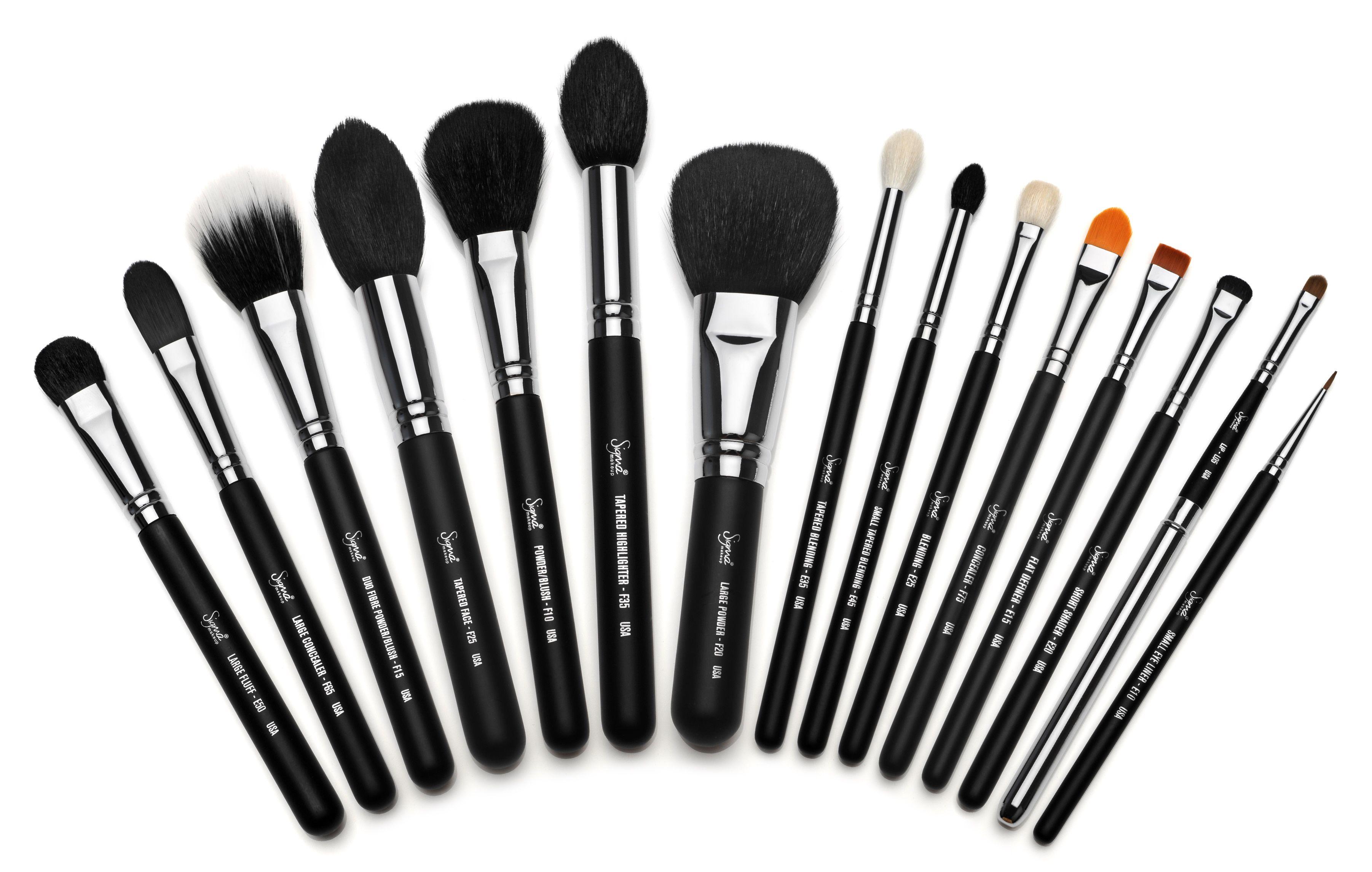 Sigma makeup brushes