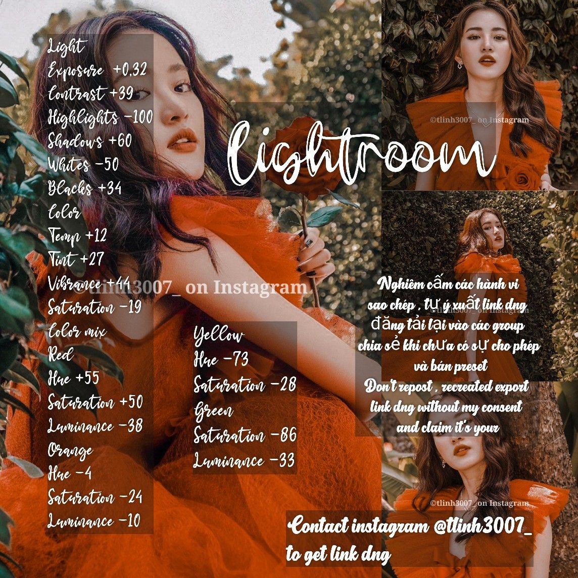 #rose #forest #girl #photography #lightroom #followme
