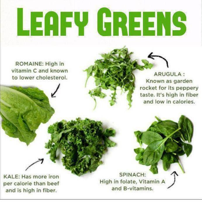 How To Eat Your Salad Greens Daily Recipe Ideas And Nutrition Facts Green Smoothie Challenge Green Leafy Vegetable Leafy Greens