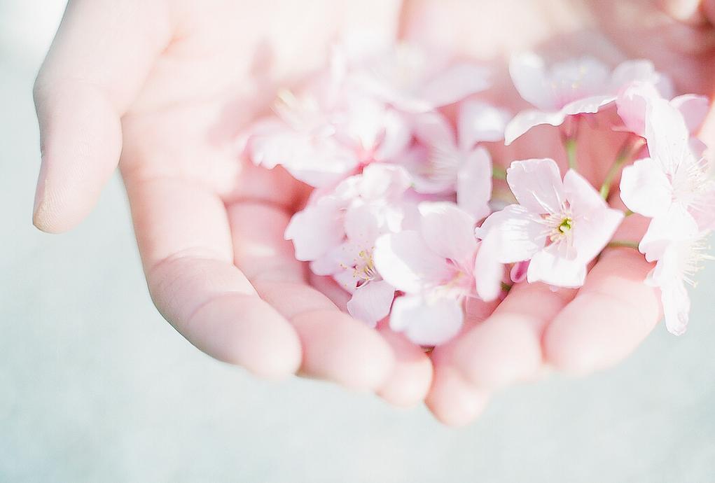 делается картинка нежная благодарность стали механизмы