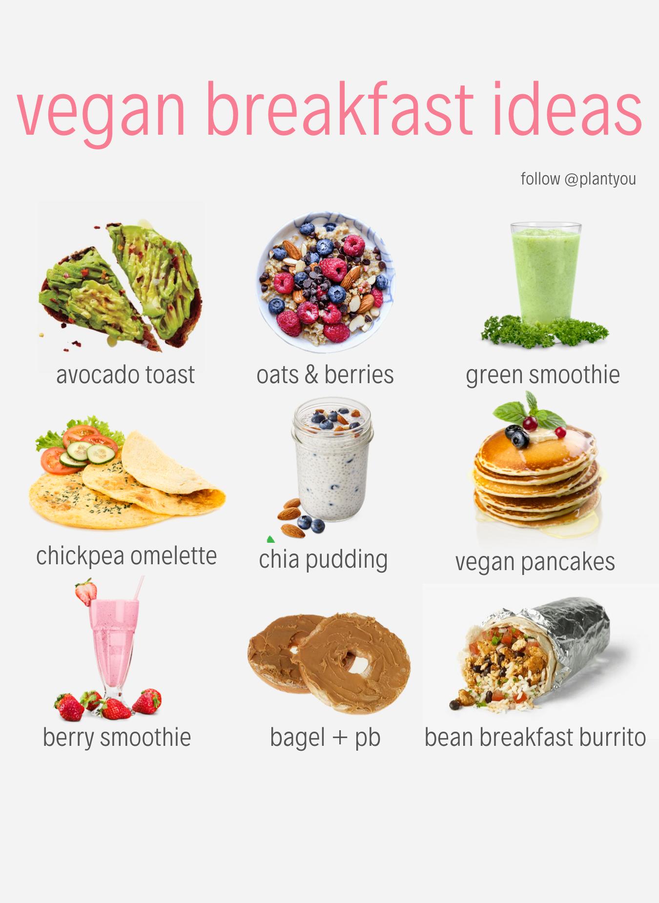Vegan Breakfast Ideas Easy Plant Based Breakfasts Quick Vegan Breakfast Quick Vegan Breakfast Vegan Recipes Plant Based Vegan Meal Plans