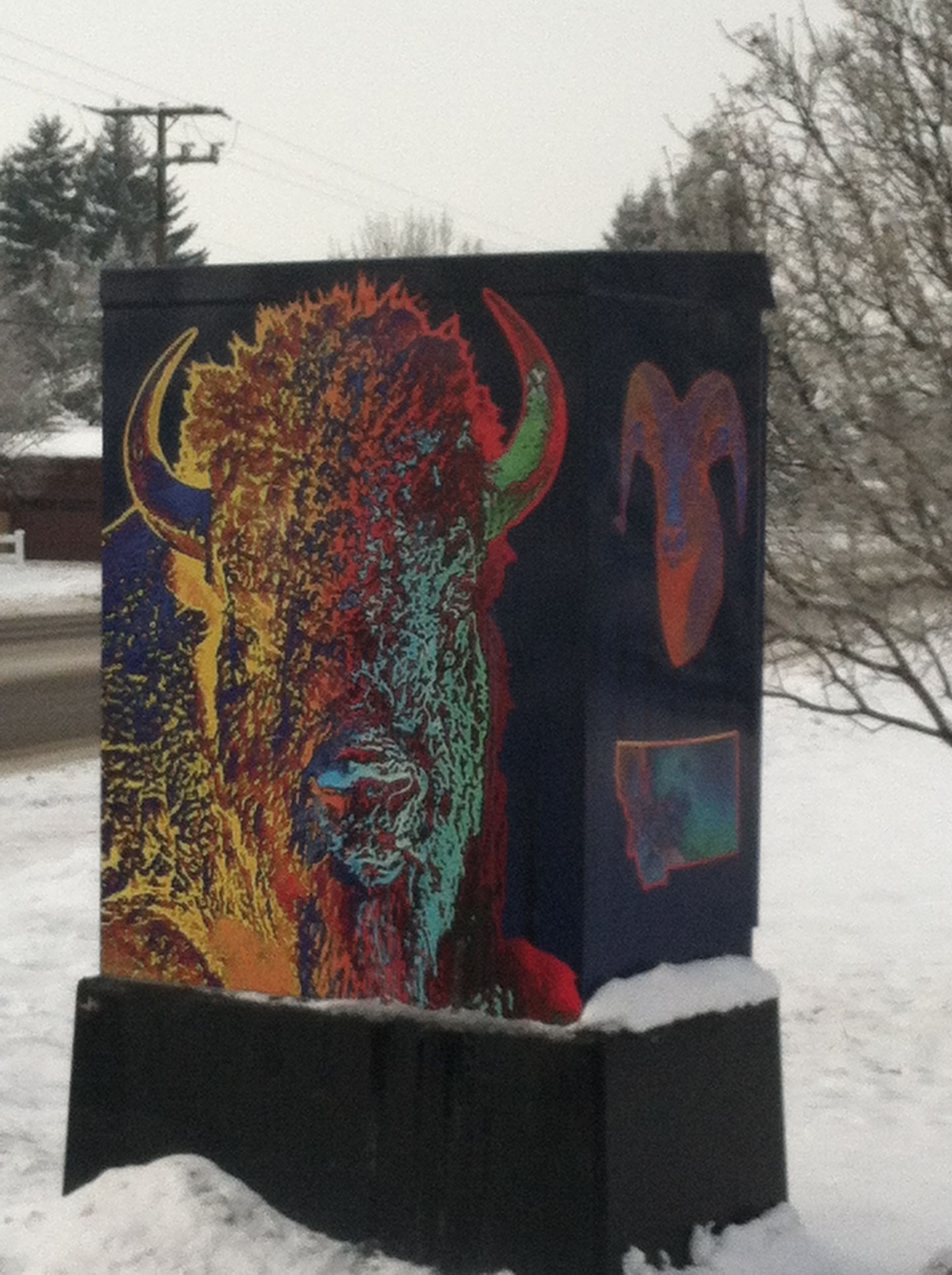 All the traffic light boxes in Missoula are individually painted by local artists.